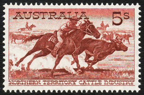 AUSTRALIA 1964 5/- CATTLE, SCARCE WHITE PAPER, VF/M