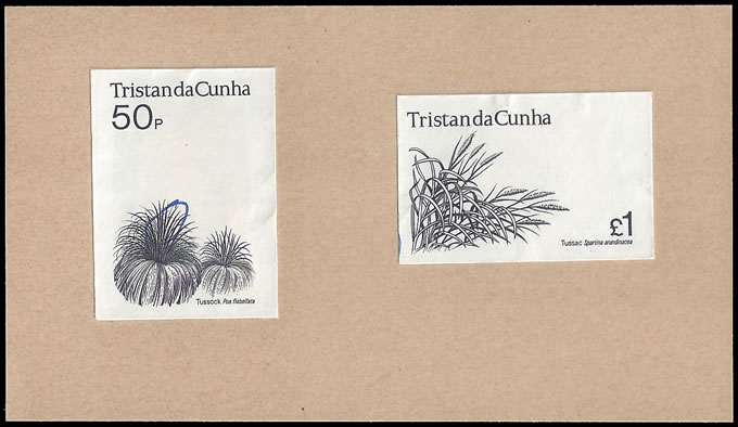 TRISTAN DA CUNHA 1972 FLOWERING PLANTS TOP VALUES DIE PROOFS