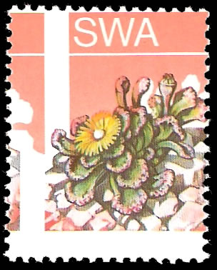 SOUTH WEST AFRICA 1973 3c SUCCULENTS BLACK OMITTED, COLOUR SHIFT