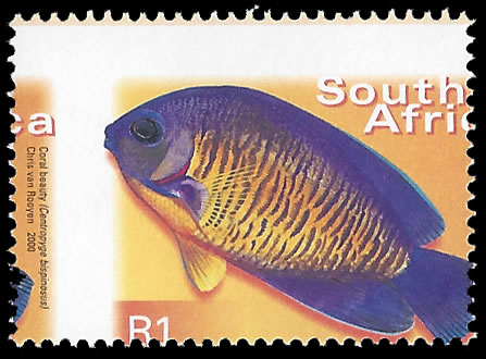 SOUTH AFRICA 2000 R1 FISH GROSSLY MISPERFORATED UM