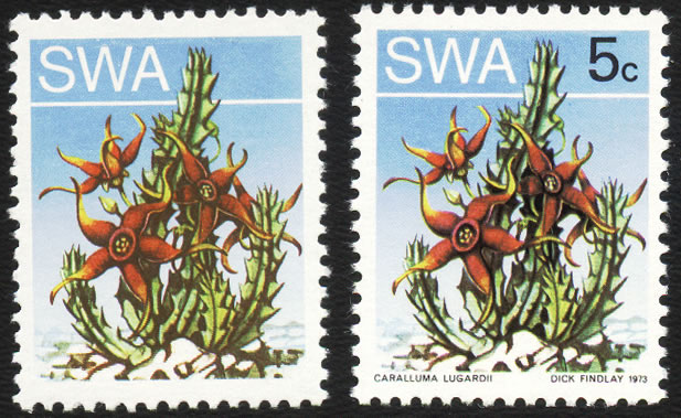 SOUTH WEST AFRICA 1973 5C SUCCULENTS BLACK OMITTED VF/UM