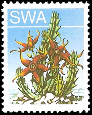 SOUTH WEST AFRICA 1973 5c SUCCULENTS BLACK OMITTED