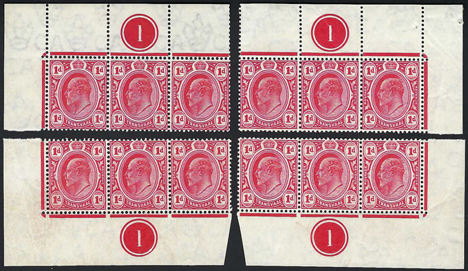 Transvaal 1905 KEVII 1d Plate 1 Strips All Corners VF/UM, Scarce