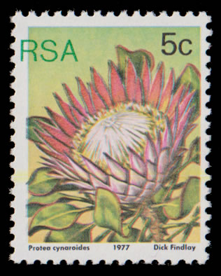 "SOUTH AFRICA 1977 5C PROTEA GREEN ""RSA"" MISPLACED UM"