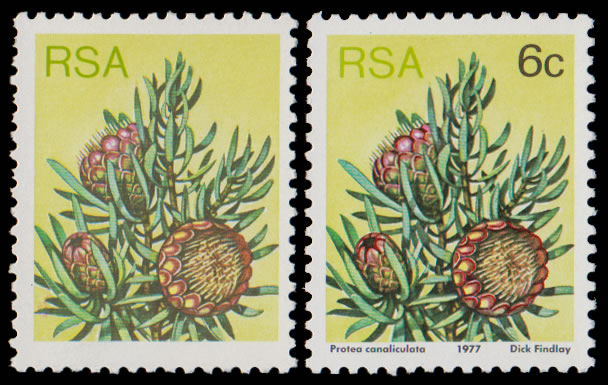 SOUTH AFRICA 1977 6C PROTEA BLACK (VALUE & TEXT) OMITTED UM